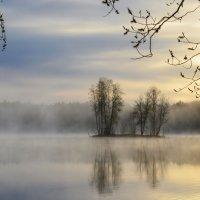 Весеннее утро.... :: Юрий Цыплятников