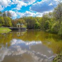 Майский пруд... :: Владимир Жданов