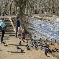 Дети и птицы :: gribushko грибушко Николай