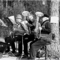 и медные трубы... :: Александр Шимохин