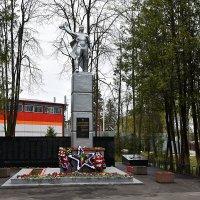 Памятник Воину-освободителю в поселке Правдинском Московской области. 9 мая 2021г. :: Наташа *****