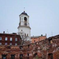 Выборг. Руины кафедрального собора и Часовая башня. :: Надежда Лаптева