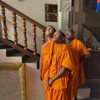 Буддистские монахи :: Наталья