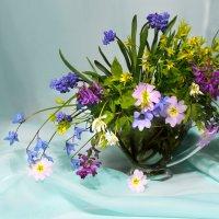 Натюрморт с первоцветами :: Olenka