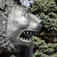 Россия. Московский Кремль. Царь-пушка (фрагмент). :: Наташа *****