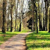 В Павловском парке весной - 3 :: Сергей