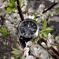 Время цветения :: Aндрей Антонов
