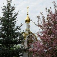 Золотые купола православных храмов. :: Милешкин Владимир Алексеевич