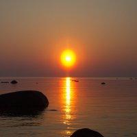 Вечернее , майское солнце :: Валентина Папилова