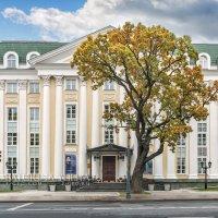 Центр Оперного пения Вишневской :: Юлия Батурина