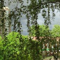 после дождя :: Anna-Sabina Anna-Sabina