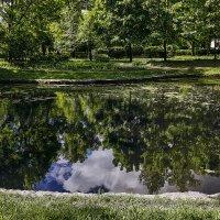 Отражение в пруду :: Геннадий Колосов