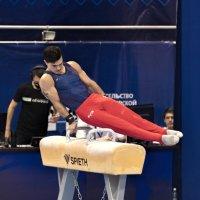 чемпион мира Артур Далолоян :: cfysx