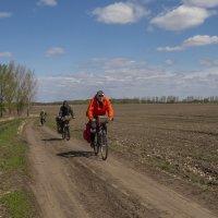 Среди полей черноземья :: Сергей Цветков