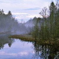 Туман :: Елена Третьякова