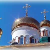 Подумаем о смысле жизни в Духов день! :: Андрей Заломленков