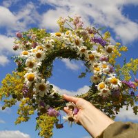С Международным днём цветка! :: Андрей Заломленков