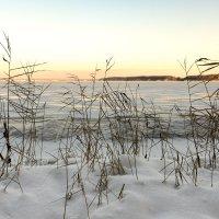 Из зимнего 4 :: Genych Bartkus