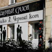 Кошачья свадьба. :: Vlad Сергиевич