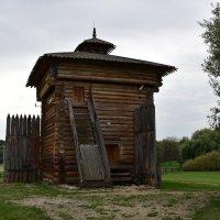 Музей деревянного зодчества в Коломенском. Башня Братского острога. :: Александр Качалин