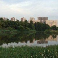 СПб Пулковский парк :: Валентина Папилова