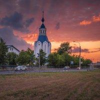 Жаркий июльский вечер в Шушарах. :: Олег Бабурин