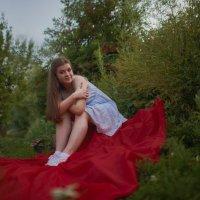 На красном :: Женя Лузгин