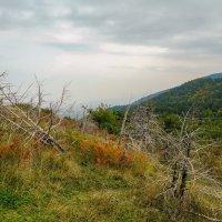 В горах Греции :: Николай Гирш