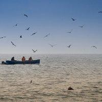 Черноморская рыбалка... :: Ирина Шарапова