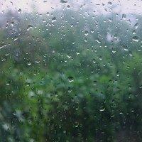 Июньский дождь :: san05 -  Александр Савицкий