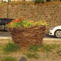 плетеная корзина для цветов :: Sabina