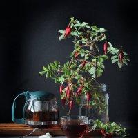 Чай с шиповником :: Татьяна Попова