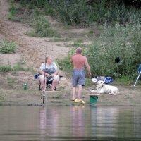 На рыбалке :: Валерий Судачок