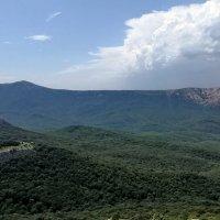 Вид на гору Чатыр-Даг :: Юлия Deimos