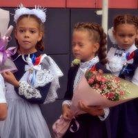Перый раз в первый класс! :: Михаил Столяров