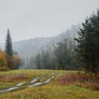 Уж небо осенью дышало :: Сергей l