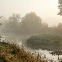 Осень в тумане :: Владимир