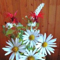 Цветы осени... :: ГЕНРИХ
