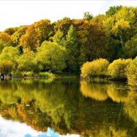 Взглянула Осень в зеркало пруда :: Ольга Русанова (olg-rusanowa2010)