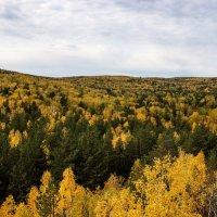 Золотая осень Южного Урала :: Любовь