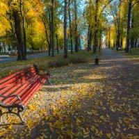 скамейка в осеннем парке :: Вячеслав Побединский