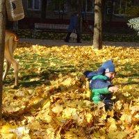 Осенние забавы :: Татьяна