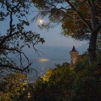 Луна и море. Ночь ликует. Игра волнЫ пейзаж рисует. Теплом пропитанный песок, Уносит мысли на восток :: Yuri Chudnovetz