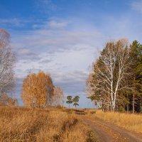 Пригожая осень. :: Лилия *