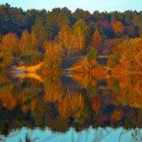 Краски осени. Отражение. :: Александра Климина
