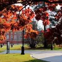 Осень в Царицыно :: boris kantor