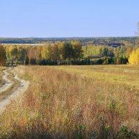 Осень :: Нэля Лысенко