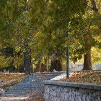 Осень  на  набережной  Салгира :: Валентин Семчишин