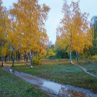 Дождливые тропки :: Юрий Муханов