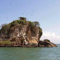 Островок возле Гаити. :: Алексей Пышненко